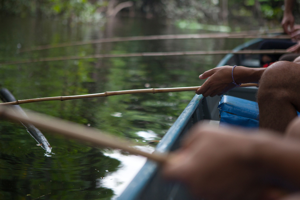 Close-up view of natives fishing piranhas in the river Amazon at Anavilhanas National Park in (Brazil)