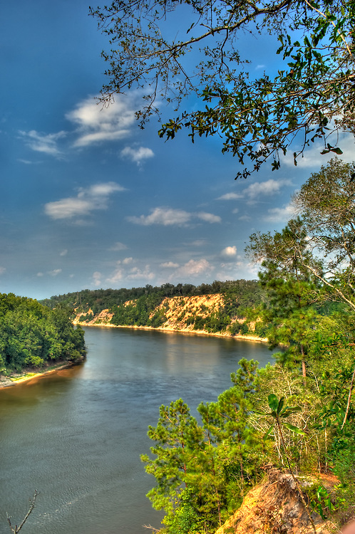 The Apalachicola River photographed from atop the bluffs in rural Liberty County, Florida.