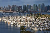 East Basin, Harbor Island & Downton San Diego