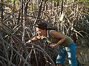 Luzriminda T. Abello (42) collecting sea snails whilst walking through the mangrove forest at low-tide, Obo-ob, Bantayan Island, The Philippines. Fishing communities in Bantayan reported severe damage to mangrove forests after typhon Haiyan but the government has yet to conduct an assessment of the impact.  Mangroves forests are critical in ensuring the sustainability of fish production. They serve as spawning grounds and nurseries for fish and are a habitat for a wide array of organisms. The salt-hardy trees also protect coastal areas from wave action and can prevent some of the inland damage associated with storm surges. Oxfam is working on various projects to support mangrove protection in Obo-ob.