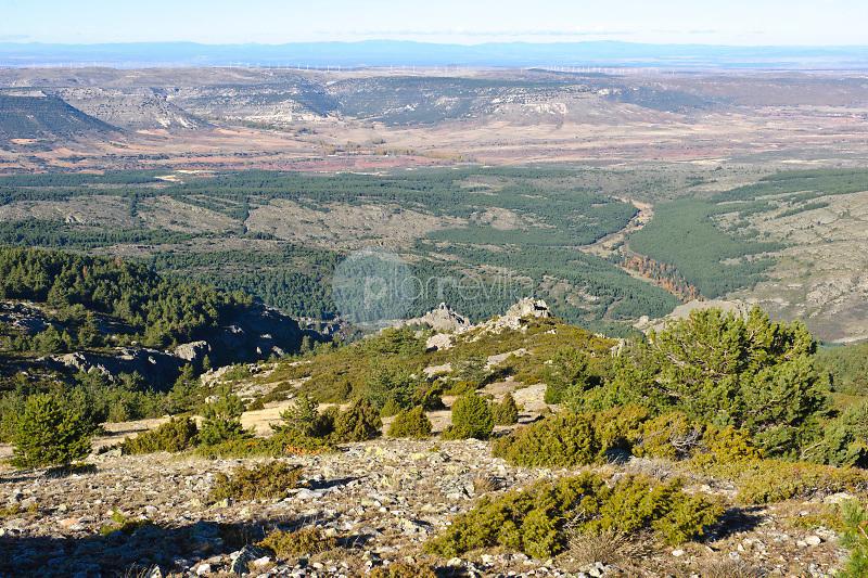 Sierra del Alto Rey. Parque Natural Sierra Norte de Guadalajara. Guadalajara