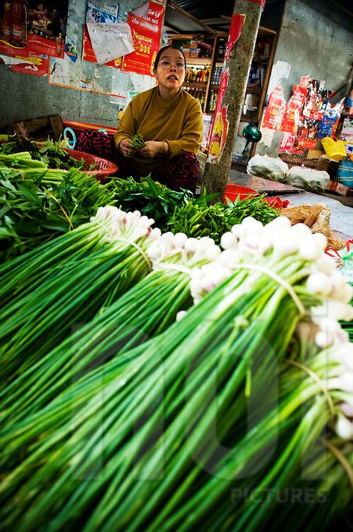 A vietnamese woman sells green onions on a market of Nha Trang, Vietnam, Southeast Asia