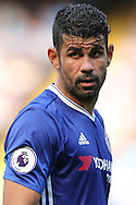 Diego Costa of Chelsea looks on and gives a stare in the direction of the assistant referee. Premier league match, Chelsea v Burnley at Stamford Bridge in London on Saturday 27th August 2016.<br /> pic by John Patrick Fletcher, Andrew Orchard sports photography.