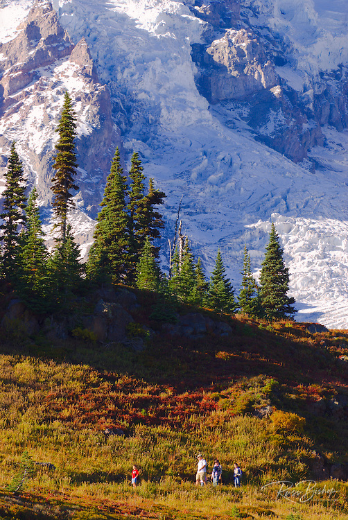 Hikers on the Skyline Trail under Mount Rainier, Mount Rainier National Park, Washington