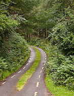 Remote single-lane road in County Kerry, Ireland