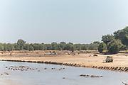 Car near river with hippopotamus in it on safari, Luangwa River, South Luangwa National Park, Zambia
