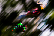 October 1, 2016: IMSA Petit Le Mans, #2 Scott Sharp, Joannes van Overbeek,Tequila Patrón ESM, Prototype