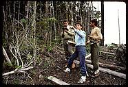 04: AMAZON ECO PLOTS BIRDS