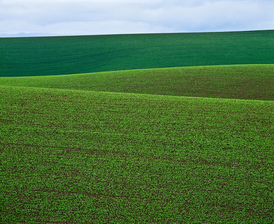 Limited Edition of 17<br /> Rolling hills of green crops on the agriculture breadbasket of Idaho's Palouse created layers of depth