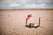 "A road side tomb. Driving through Arizona...Images to illustrate the road and the people you meet along the way on a trip across the USA...A 4-weeks road trip across the USA, from New York to San Francisco, on the steps of Jack Kerouac's famous book ""On the Road"".  Focusing on nomadic America: people that live on the move across the US, out of ideology or for work reasons."