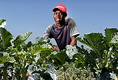 Commercial Portraits at Shoprite Gardens
