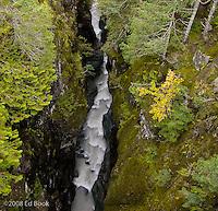 185 feet to the Cowlitz River -Mount Rainier National Park, Washington, USA
