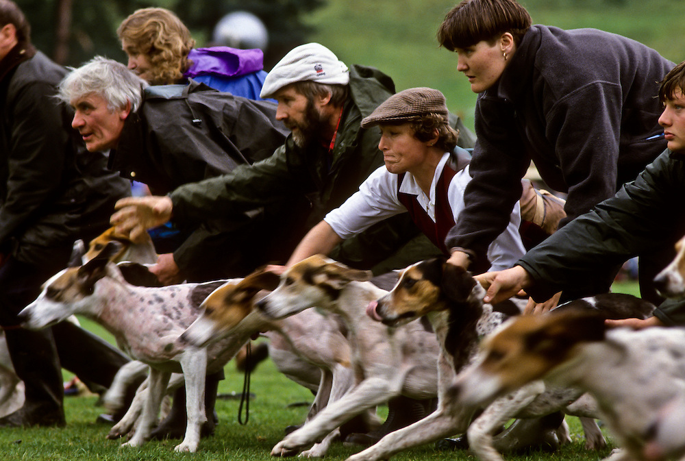 A dog race in the Lake District.
