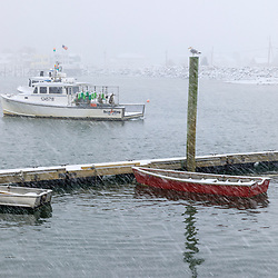 A snowy morning in Rye Harbor, New Hampshire.