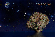 "Earth OG Kush nug photo  that's ""out of this world"" produced in professional studio."