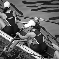 STANFORD ROWING STORY