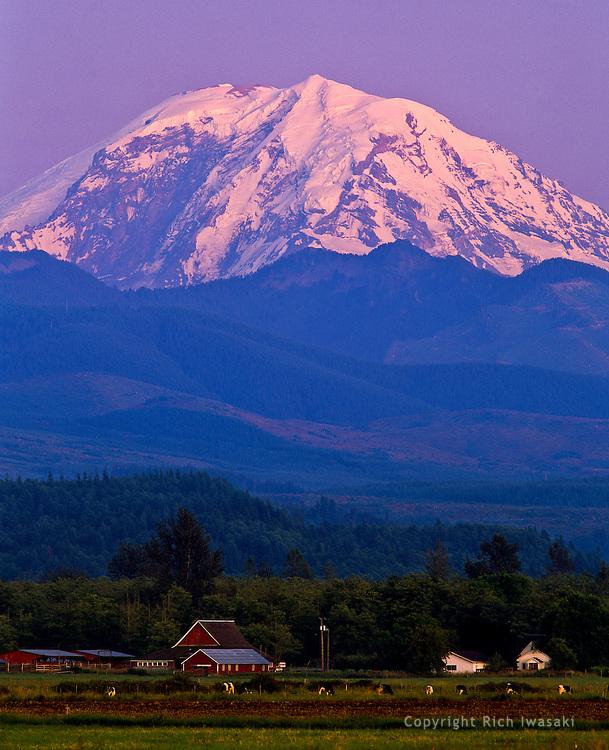 Mt. Rainier at sunset, King county, near Enumclaw, Washington