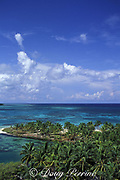 coconut palm trees and shallow lagoon, Northern Two Cayes, Lighthouse Reef Atoll, Belize, Central America ( Caribbean Sea )
