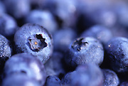 Close up, selective focus photograph of Blueberries