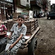 """Recolectores """"Zabbaleen"""" en una calle de Mokattam. En medio del barrio de Manshiet Nasr a las afueras de El Cairo esta situado el asentamiento de Mokattam conocido como la """"Ciudad de la Basura"""" , está habitado por los Zabbaleen ,una comunidad de unos 45.000 cristianos coptos que viven desde hace varias décadas de reciclar los desperdicios que genera la capital egipcia: plástico, aluminio, papel y desechos órganicos que transforman en compost . La mayoría forman parte de la Asociación para la Protección del Ambiente (APE) una ONG que actúa en el área, cuyos objetivos son proteger el medio ambiente y aumentar el sustento de las recuperadores de basura de El Cairo. Según la ONU, el trabajo que se realiza en Mokattam como uno de los diez mejores ejemplos del mundo en el mejoramiento medioambiental. El Cairo , Egipto, Junio 2011. ( Foto : Jordi Camí )"""