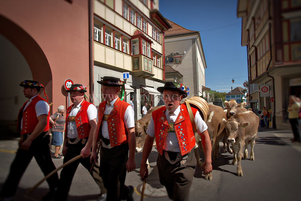 Traditionally dressed swiss men leading the seasonal herding of cattle through the streets of Appenzell, Switzerland