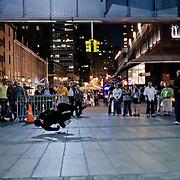 Dancer in the street near the Brooklyn Bridge