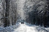 Podlasie, 06.02.2021. N/z zasniezona Narewkowska Droga z Narewki do Bialowiezy przez Puszcze Bialowieska fot Michal Kosc / AGENCJA WSCHOD