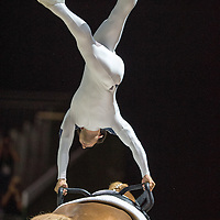 Vaulting - Individual Male Compulsory Competition