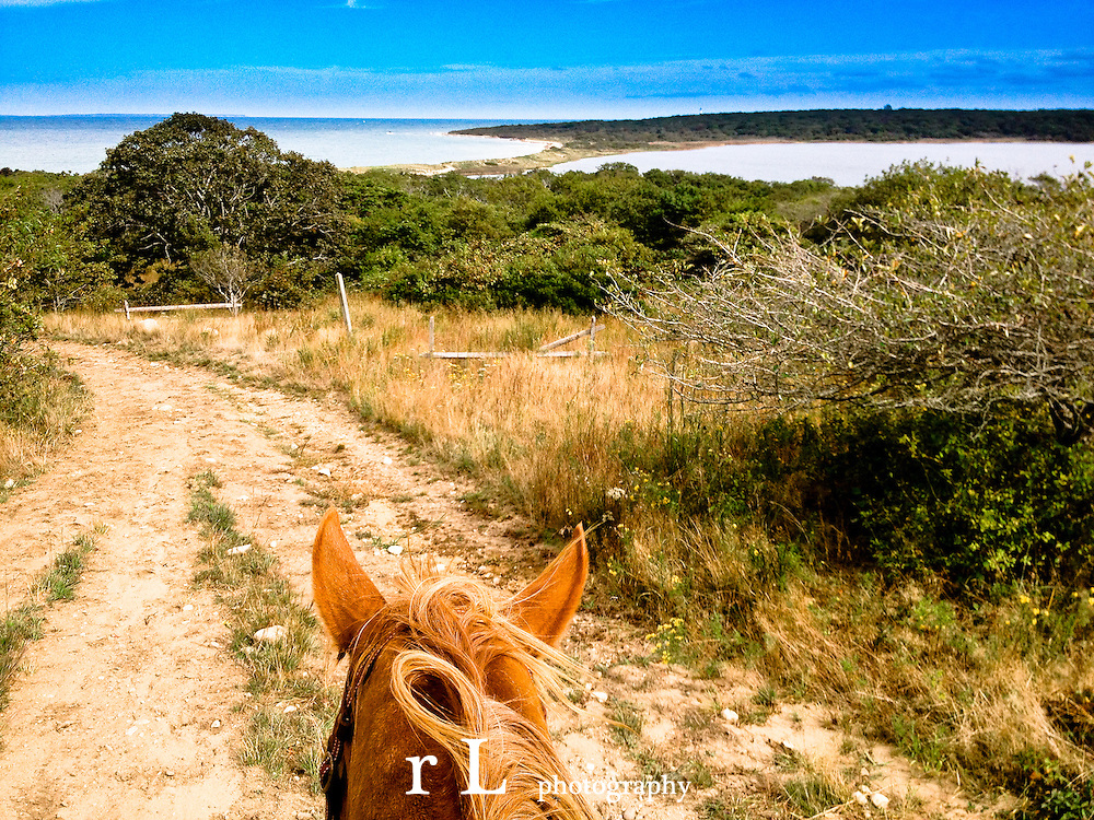 Deep Hollow Horse Ranch in Montauk, Trail Riding on the beach and in the woods