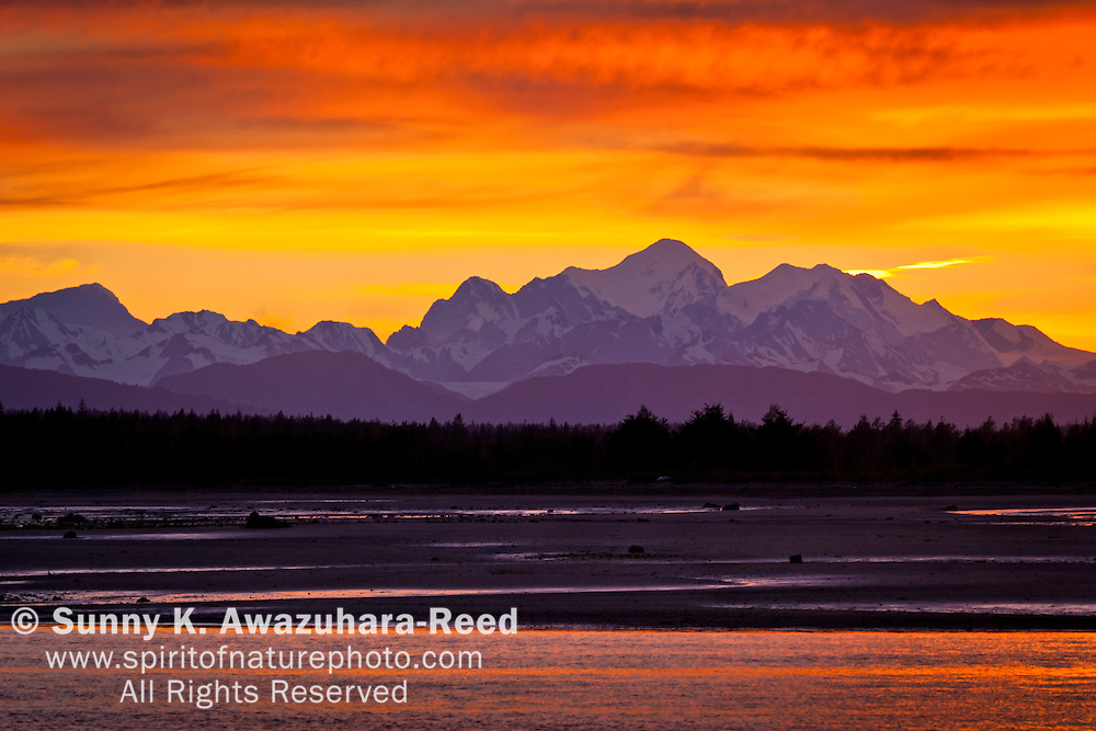 The rich firely golds and reds of sunset paint the sky behind Mt. Fairweather reflect in the water of  the Salmon River delta, Fairweather Mountains. Glacier Bay National Park & Preserve, SE Alaska, summer.