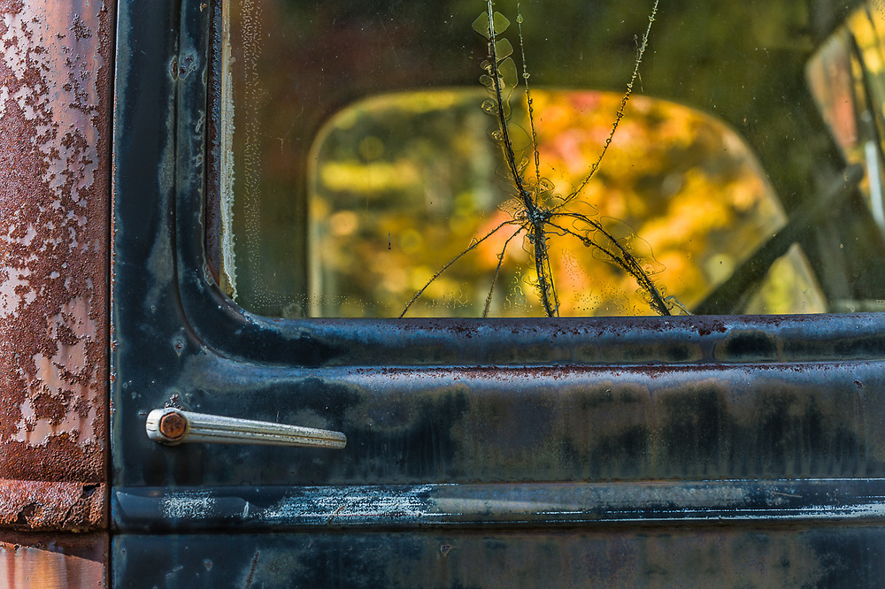Old abandoned truck, October, Upper Peninsula, Michigan,  USA