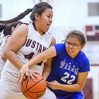 Navajo Pine Warrior Cheynay Castillo (22) attempts to grab the ball away from Ramah Mustang Idalis Yazzie (43) Tuesday at Ramah High School.