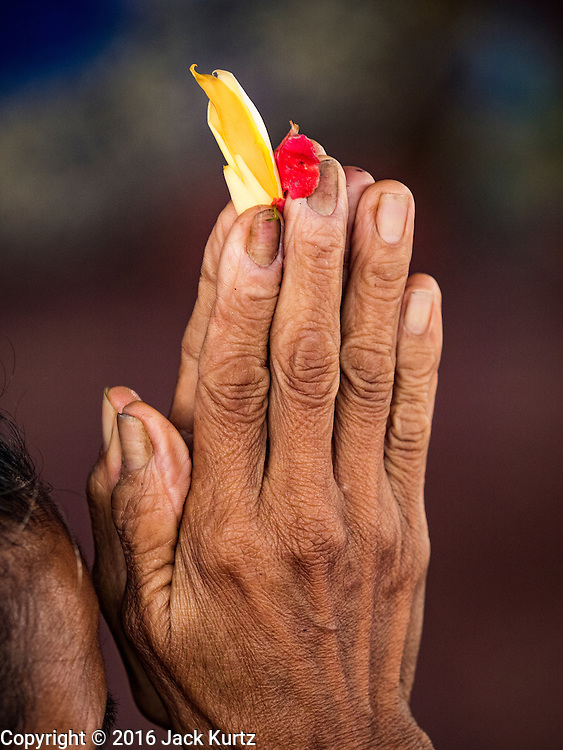 16 JULY 2016 - UBUD, BALI, INDONESIA: A Balinese Hindu woman holds flower petals while she prays Saturday before the mass cremation. Local people in Ubud exhumed the remains of family members and burned their remains in a mass cremation ceremony Wednesday. Almost 100 people were cremated and laid to rest in the largest mass cremation in Bali in years this week. Most of the people on Bali are Hindus. Traditional cremations in Bali are very expensive, so communities usually hold one mass cremation approximately every five years. The cremation in Ubud concluded Saturday, with a large community ceremony.     PHOTO BY JACK KURTZ