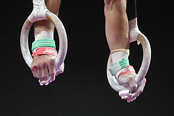 August 18, 2018 - Boston, Massachussetts, U.S - SAM MIKULAK competes on the still rings during the final round of competition held at TD Garden in Boston, Massachusetts. (Credit Image: © Amy Sanderson via ZUMA Wire)