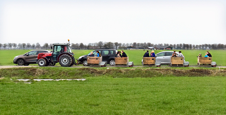 Nederland, Dreumel, 19-2-2091 Er is een open dag georganiseerd door Albert Heijn bij een melkveebedrijf, boerderij . De gasten kunnen een ritje maken in een treintje van kratten die normaal voor de fruitoogst gebruikt worden .Foto: Flip Franssen