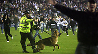 Photo: Paul Thomas.<br /> Derby County v Southampton. Coca Cola Championship. Play Off Semi Final, 2nd Leg. 15/05/2007.<br /> <br /> Derby fans storm the pitch.