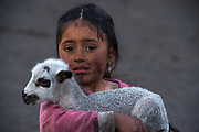 Indian child & lamb Melany Jaya<br /> Pulingue San Pablo community<br /> Chimborazo Province<br /> Andes<br /> ECUADOR, South America