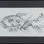 """Title: Fish Frenzy<br /> Artist: Holly Sietsema<br /> Date: 2000<br /> Medium: India Ink<br /> Dimensions: 27 x 18""""<br /> Instructor: Jerry DeFrese<br /> Status: On display<br /> Location: San Gabriel Campus Building 1000, Room 1309, Dean of Liberal Arts Office"""