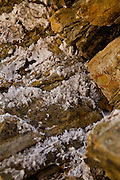 Close up of borax (rhyolite) crystal deposits in the siltstone canyon walls of Golden Canyon in Death Valley National Park, Nevada, USA.