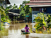 30 SEPTEMBER 2016 - SAI NOI, AYUTTHAYA, THAILAND:  A woman uses a boat to go home in a flooded village in Ayutthaya province. The Chao Phraya River, the largest river that runs through central Thailand, has hit flood stage in several areas in Ayutthaya and Ang Thong provinces. Villages along the river are flooded and farms are losing their crops due to the flood. This is the same area that was devastated by floods in 2011, but the floods this year are not expected to be as severe. The floods are being fed by water released from upstream dams. The water is being released to make room for heavy rains expected in October.     PHOTO BY JACK KURTZ