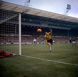 Englands Gordon Banks in action