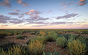 Barren landscape at sunset, Broken Hill, New South Wales, Australia