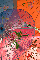 United States, California, San Francisco, silk umbrellas with decorative painting hanging in shop.