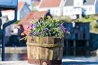 Norway, Sokndal. Sogndalstrand harbor village.