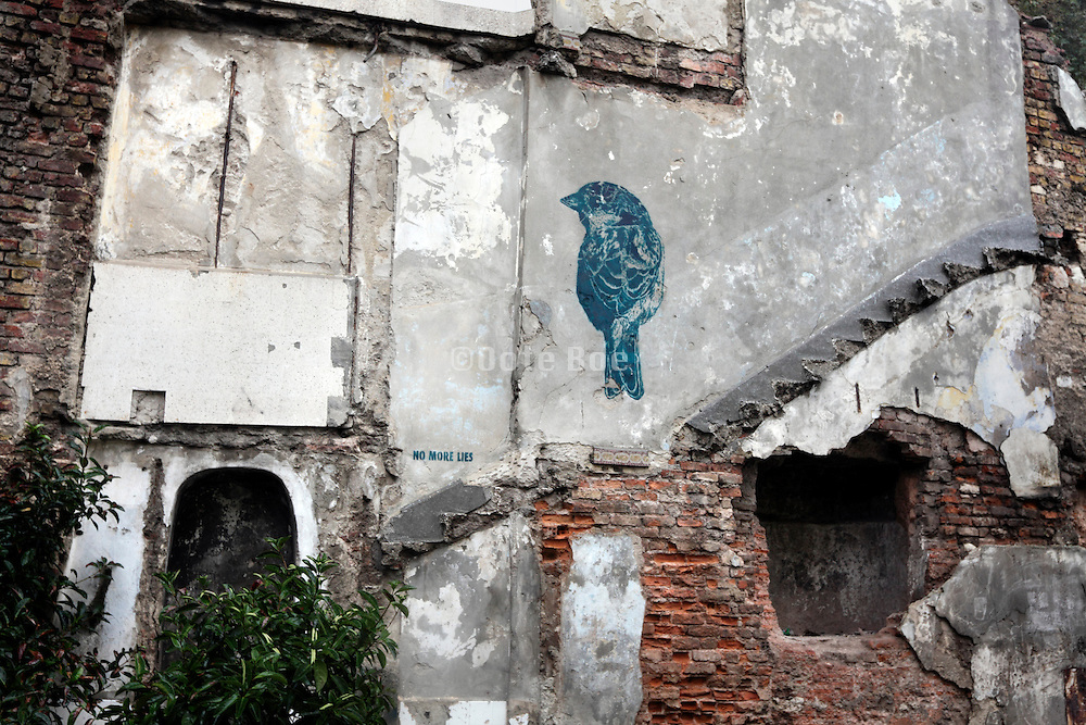 """bird and text saying """"no more lies"""" on old broken down house wall"""