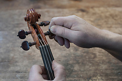 Hands of worker holding violin