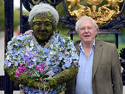 © Licensed to London News Pictures. 17/05/2012. Kew, UK SIR DAVID ATTENBOROUGH looks at the sculpture. A Photocall at Royal Botanic Gardens, Kew with Sir David Attenborough as he unveils and poses with a life-size sculpture of himself created by RHS Young Chelsea Florist of the Year 2009, 10 & 11 - Joe Massie. The artwork has been commissioned to celebrate the broadcaster's three part series Kingdom of Plants 3D with David Attenborough - which was filmed entirely at the Royal Botanic Gardens, Kew.. Photo credit : Stephen Simpson/LNP