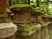 Stone lanterns covered in moss leading up to the Kasuga Taisha Shrine, Nara, Japan