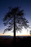 Sunrise, Bryce Canyon National Park, Utah