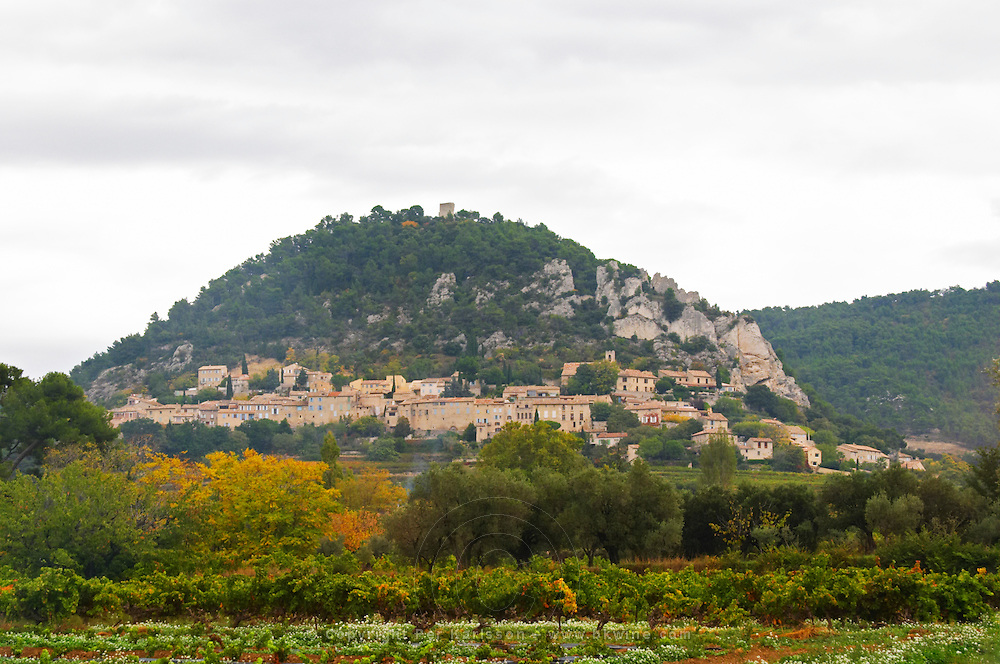 The Seguret village clinging to the hillside, viewed over a vineyard, Domaine de Cabasse. Vaucluse, France, Europe
